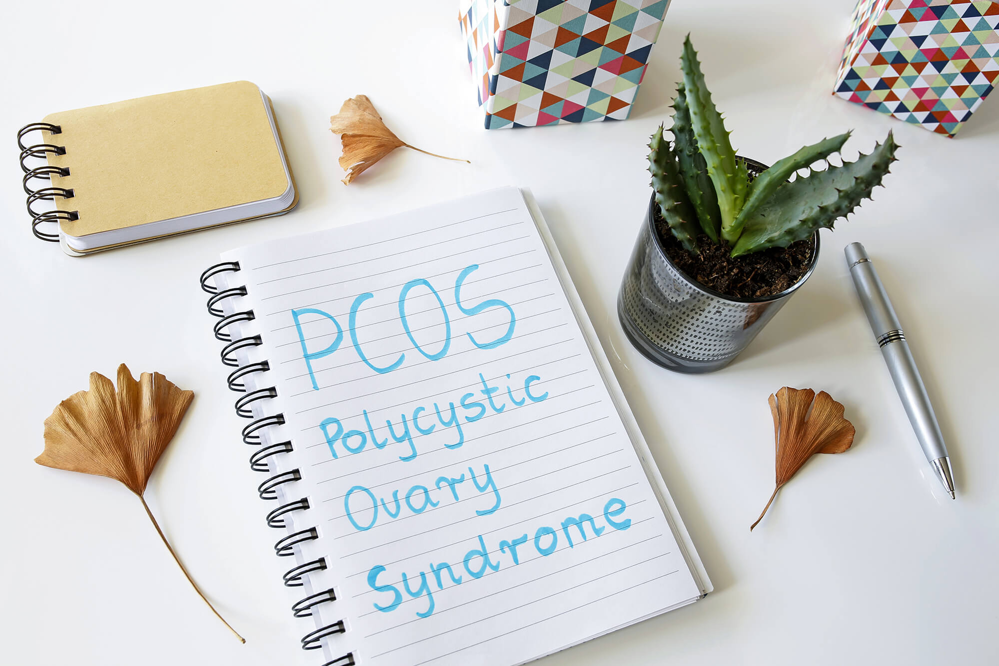 PCOS notepad